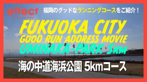 海の中道海浜公園 5kmコース(福岡市東区)